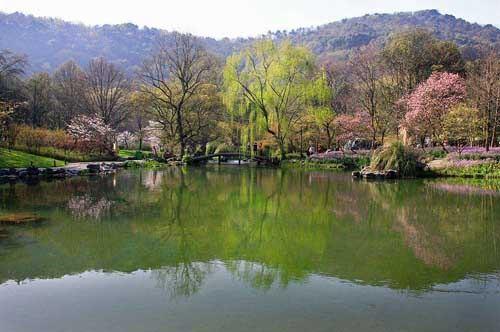 湖上春来似画图,乱峰围绕水平铺