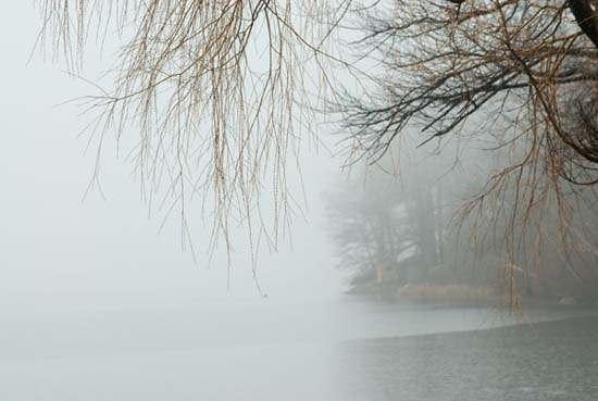 寒雨连江夜入吴,平明送客楚山孤。 洛阳亲友如相问,一片冰心在玉壶。