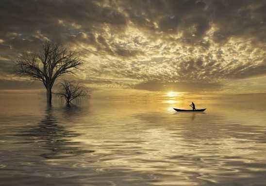 世事一场大梦,人生几度秋凉。夜来风叶已鸣廊。看取眉头鬓上。