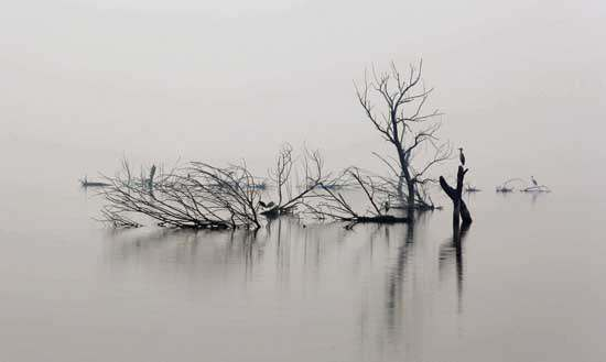 三月七日,沙湖道中遇雨。雨具先去,同行皆狼狈,余独不觉。已而遂晴,故作此词。