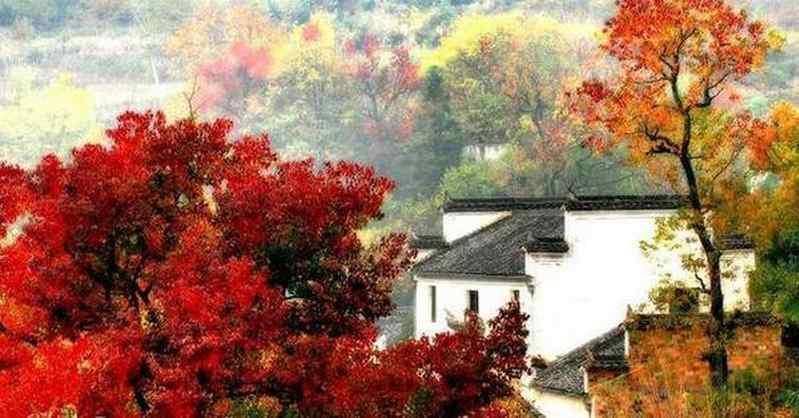 描写秋天的对联
